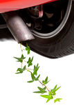 Clean car exhaust. Closeup of car exhaust with ivy coming out instead of smoke Royalty Free Stock Images