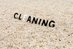Clean carpet Royalty Free Stock Image