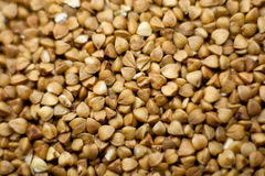 Clean cereals - buckwheat Stock Images