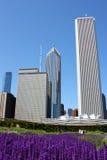 clean chicago stad royaltyfri bild