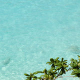 Clean clear blue water Stock Photography