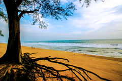 Clean and clear sand beach blue sky Royalty Free Stock Photo