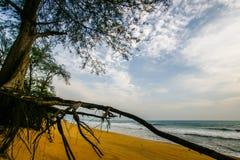 Clean and clear sand beach blue sky Stock Photo