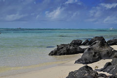 The clean clear transparent sea water off Ile aux Cerfs Mauritius with emerged black rocks and visible sandy beach Royalty Free Stock Images