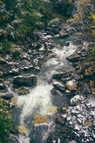 Clean and clear water stream in the mountains in a green valley Stock Images