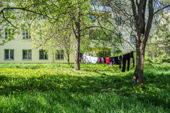 Clean clothes drying in the sunshine on a rope outdoors. Amongst a green of grass and trees stock photography