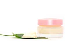 Clean cream facial Stock Photography