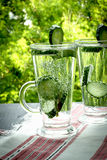 Clean drinking water with cucumber and dill in a glass on a line. Carbonated bottled water with cucumber dill on green background Royalty Free Stock Photography