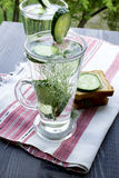Clean drinking water with cucumber and dill in a glass on a line. Carbonated bottled water with cucumber, dill and toast on a wooden table Stock Photography