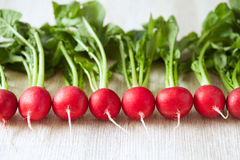 Clean eating radishes on white wooden background Royalty Free Stock Photo