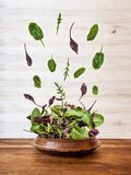 Salad explosion with arugula, beetroot, spinach and sprouts on bright wooden board over white background, top view. royalty free stock photos