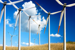 Clean energy. On the summer Stock Images