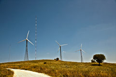 Clean energy. With aerogenerators is the future Royalty Free Stock Photos