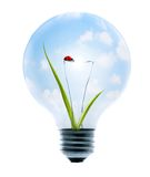 Clean Energy. A light bulb with a bright sky, grass, and lady-bug Stock Photo