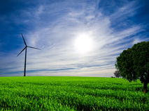 Clean energy. Wind turbine and tree at sunset Royalty Free Stock Image