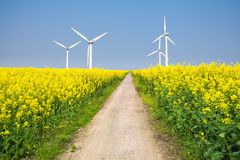 Clean energy in the spring Stock Image