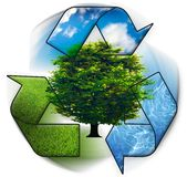 Clean environment - conceptual recycling symbol. Ang green tree Royalty Free Stock Image