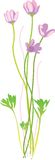 Clean flower vector illustration Royalty Free Stock Images