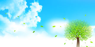 Clean fresh green background illustrations Royalty Free Stock Photo