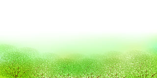 Clean fresh green background illustrations Royalty Free Stock Image