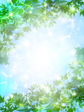 Clean fresh green background illustrations Stock Image