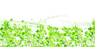 Clean fresh green background illustrations Stock Photo