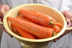 Clean fresh and healthy organic carrot. Clean some fresh and healthy organic carrot stock photos