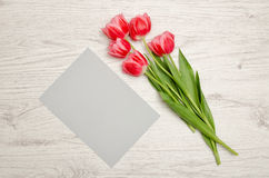 Clean gray sheet of paper and pink tulips on a light wooden background. top view, space for text Stock Images
