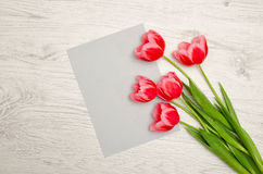 Clean gray sheet of paper and pink tulips on a light wooden background. top view, space for text Stock Photos