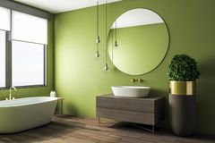 Clean green bathroom interior. With appliances and decorative pot tree. Design and real estate concept. 3D Rendering royalty free illustration
