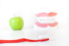 Clean and healthy teeth Royalty Free Stock Image