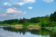 Clean lake in green spring summer forest. Clean lake in green spring  summer forest Stock Photo