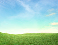 Clean landscape. Clean field on a sunny day Stock Image