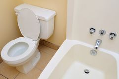 Clean and luxurious toilet Stock Photography