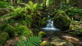 Clean mountain creek Royalty Free Stock Photography