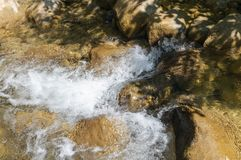 Clean mountain river Royalty Free Stock Image