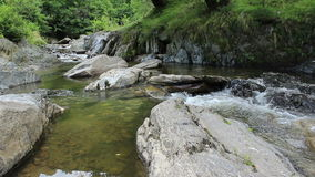 Clean Mountain River stock footage