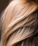 Clean natural healthy hair close-up Stock Images
