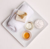 Clean and Natural Spa. Elements on white Royalty Free Stock Photography