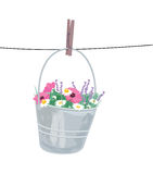 Clean nature. Vector illustration of a wild flowers hanging on a clothesline Stock Image