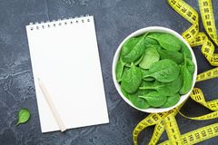 Clean notebook, green spinach leaves and tape measure top view. Diet and healthy food concept. Clean notebook, green spinach leaves and tape measure from above stock photography