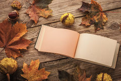 Clean open vintage notebook surrounded by maple leaves and chestnuts with film filter effect. Clean open vintage notebook surrounded by autumnal maple leaves and stock photo