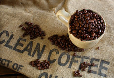 Clean organic coffee beans Royalty Free Stock Photos
