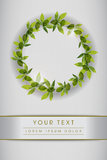 Clean Page Layout with Green Leaves. Page layout template with green leaves Royalty Free Stock Image
