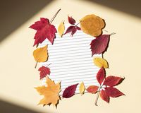 Free Clean Paper Sheet In A Lined Surrounded By Autumn Leaves. Bright Sunlight And Shadows At Edges Of Frame. Beige Background, Top Royalty Free Stock Images - 156314609