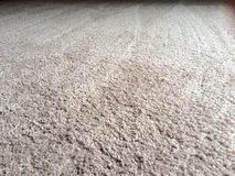 Clean plush carpet floor. Freshly cleaned carpeting in light beige on a large room floor. New carpet flooring carpet cleaning service Royalty Free Stock Photos