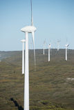 Clean Renewable Wind Energy Australia. Wind farm at coast of Southern Ocean in Western Australia, supplying renewable clean energy to town of Albany, summer Stock Photo