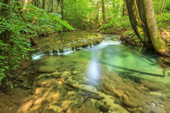 Clean river and waterfall in forest Stock Image