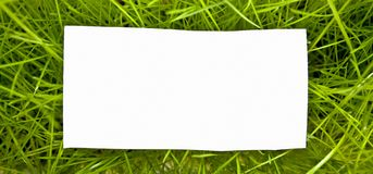 Clean sheet on green grass Royalty Free Stock Photography
