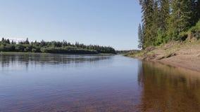 Clean Siberian taiga river stock video footage
